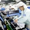 베트남, 11개월간 외국인 직접투자 급증.., 53% 증가