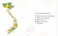 베트남, 전국 35개 성과 시에서 코로나 수준 발표
