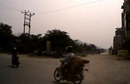 베트남 로드뷰: 오토바이에 소 운반하는 장면 포착
