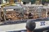 베트남, 북중부 지역 주택에서 사육하던 성체 호랑이 17마리 발견