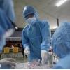 베트남 2/24일 오후 확진자 9건 추가로 누적 2,412건으로 증가.., 모두 지역 감염