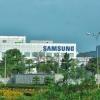 베트남 한국계 기업들.., 특별입국 전문가들의 검역 완화 희망