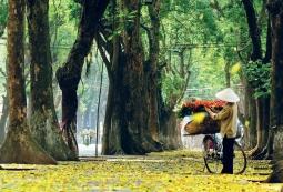10월에 꼭 베트남을 방문해야 하는 5가지 이유