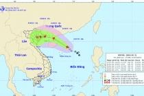 """베트남, 8월 2일부터 3호 태풍 """"위파(WIPHA)"""" 영향권"""