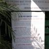 그들만의 리그, '베트남 하노이 한인회장 선거'