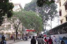 베트남창업, 체류 한국인 대상 서비스업 유망