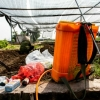 베트남 야채는 안전할까? 유독성 농약에 중독된 농부들...