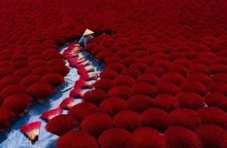 베트남 사진작가 4명, 사진전 최종  후보 포함