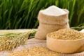 베트남, 쌀 수출 일시 중지 식량 안보 확보 우선