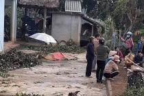 타이응옌省, 마약에 취해 4명 살해하고 1명 중상입힌 범인 체포