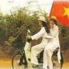 베트남의 교육제도 이해