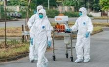하이증성: 코로나19 확진자 완치 후 19일만에 재발.., 당국 추가 확인 중