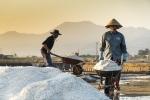 IMF 보고서, 베트남 경제 위기 완화를 위한 개혁 촉구