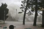태풍 '망쿳' 베트남 북부지역에 영향 예상..., 열대성 저기압으로 약화 예상