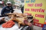 하노이, 개고기 식용 단속 강화..., 2021년까지 전면 금지 목표