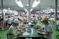 베트남 진출 삼성 전자 관련 4개社 상반기 매출액은 증가했지만, 이익은 약 40% 감소