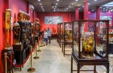 사이공, 베트남 토종 '응옥링 인삼' 개인 박물관 오픈