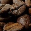 베트남 로부스타 커피를 아시나요