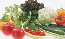 베트남에 대한 오해 그리고 진실 : 채소 이야기