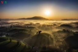 여행: 새해 일출 명소, 하노이 인근으로 일상 탈출.., '롱꼭 녹차 언덕'
