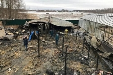 베트남, 모스크바 교외 농장 화재로 8명 사망.., 정부 현황 파악 중