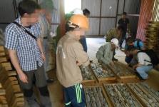베트남, 전략 광물 희토류 기술 개발 연구 첫 개시.., 정부 차원 관리 강화