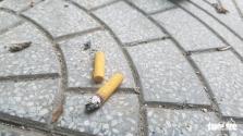 관광지 훼: 공공장소에서 담배꽁초 투기, 소변 변 등에 벌금