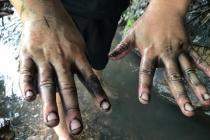 하노이, 썩은 수돗물 원인은 정수장으로 흘러든 폐유 때문