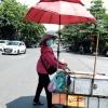 베트남 북중부 폭염 주의보.., 27년만에 맛보는 장기간 가마솥 더위