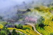 베트남, 코로나 2차 발생 통제되면서 국내 관광 활성화 재개