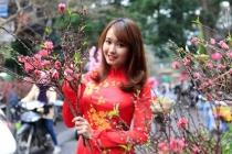 베트남, 뗏 동안 예년보다 따뜻한 날씨..., 2월 평균 기온도 예년보다 높아