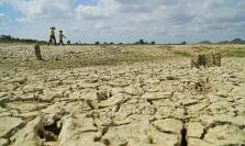 베트남 중부, 낮은 강우량으로 가뭄 피해 속출