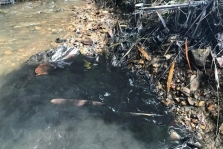 하노이, 이상한 냄새나는 수돗물이지만 위생에는 문제없다?