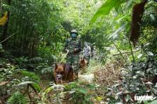 베트남, 국경 통제 강화 후 3일만에 343명의 불법 입국자 발각