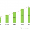 2012년 베트남 전자상거래시장의 특성과 동향