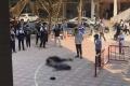 하노이, 대학생이 13층에서 추락해 사망.., 추락 현장에 있던 다른 학생은 중상