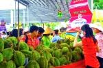 """호치민市, """"남부 과일 축제"""" 6/1일부터..., 과일 약 1,000톤 전시 판매"""