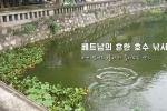 베트남의 흔한 호수 낚시꾼