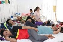 다낭시: 뎅기열 환자 급격하게 증가.., 예방 활동 강화