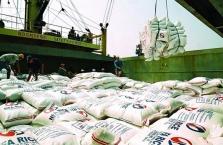 베트남 쌀 수출 가격 사상 최고치 기록.., 코로나19 영향