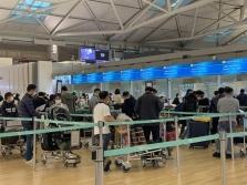 한국에 체류중이던 베트남인 450명 귀국.., 입국 후 바로 격리