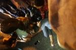 달랏, 음식점에서 불만 표출하던 외국인..., 폭행당해 실신 후 병원행