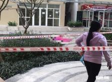 호찌민시: 여성 변호사 아파트 추락사 사건 합동 조사