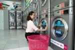 베트남, LG전자 '셀프 세탁소' 특화 상업용 세탁기..., 사업 확장  기대