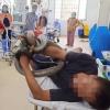 베트남, 대형 킹 코브라에 물린 남성.., 코브라 움켜쥐고 응급 후송