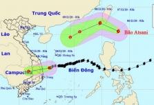 태풍 고니 세력 약화.., 또 다른 태풍 '앗사니' 열대성 저기압으로 약화 예상