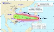 베트남, 태풍 9호 '몰라베' 접근 중.., 8호 태풍은 세력 약화