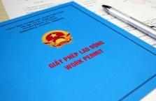 베트남, 노동허가서 없이 비자만 있는 외국인 근로자 채용은 불법