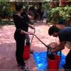 베트남, 뱀요리 전문점
